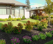 Modern Garden Landscaping in Ottawa